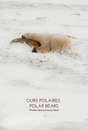 Ours Polaires / Polar Bears (pages blanches / blank pages)